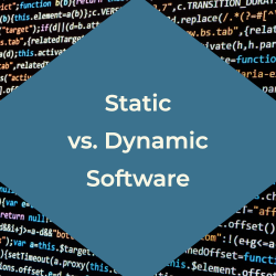 Dynamic vs. Static Software