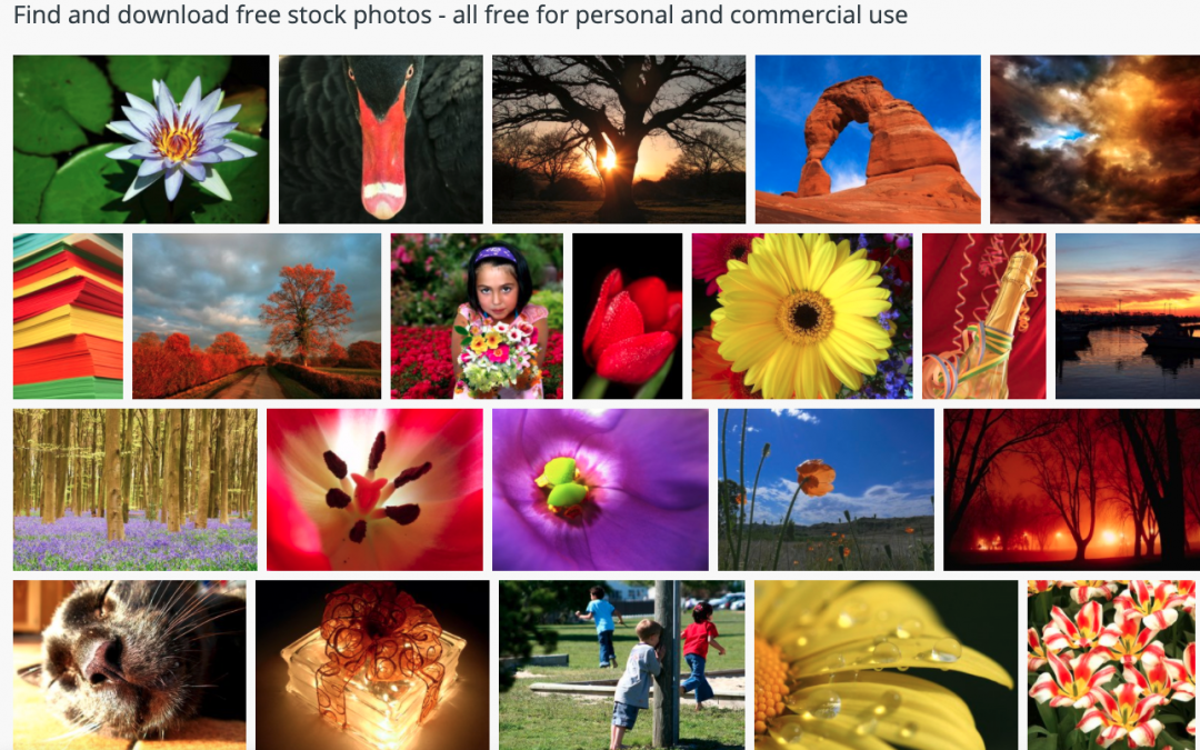 Free Images – Royalty-free photos and images